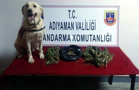 Narince Köyünde Durdurulan Araçta Uyuşturucuya 5 Gözaltı