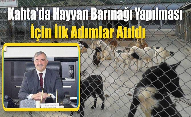 Kahta'da Hayvan Barınağı Yapılması İçin İlk Adımlar Atıldı