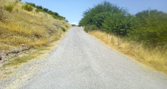 Köylüler dar yolun genişletilmesini istiyor