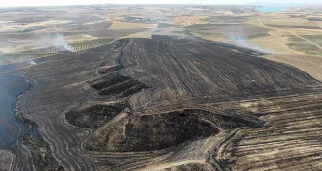Adıyaman-Samsat Karayolunda Anız yangını bahçelere sıçradı