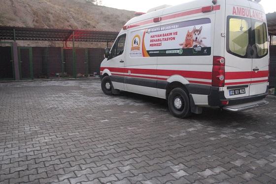 Kahta'da Hayvan Barınağı Projesi Tamamlandı