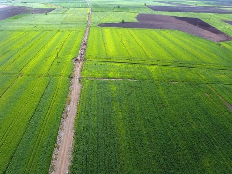 Adıyaman'da 290 Bin 851 Dekar Arazi Toplulaştırıldı