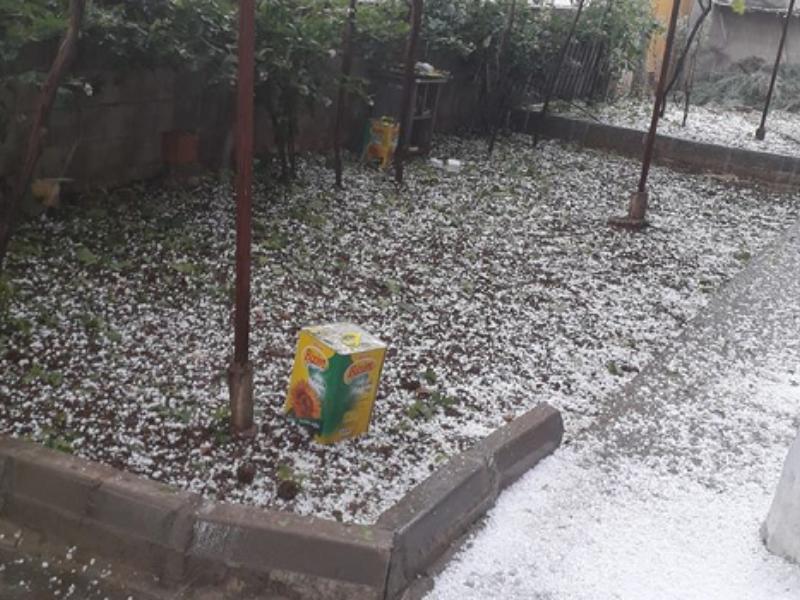 Kahta'da ceviz büyüklüğünde dolu yağışı hayatı olumsuz etkiledi